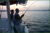 Striped bass fishing is generally good year round on Lake Buchanan in the Highland Lakes area of Central Texas.